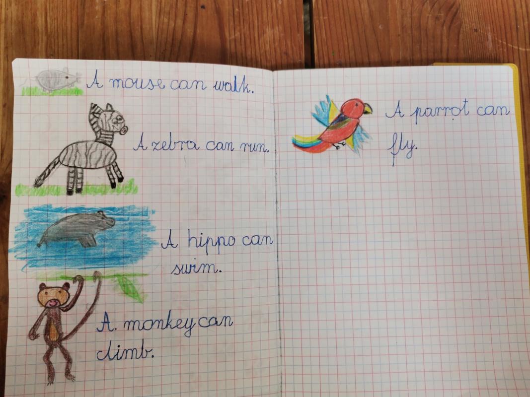 Lena-Wijatyk-kl.-1a-animals-zdania
